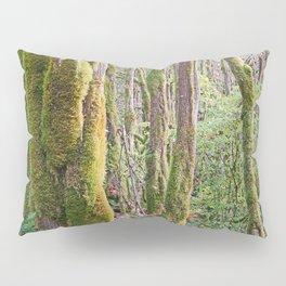 WARM AUTUMN RAINFOREST Pillow Sham