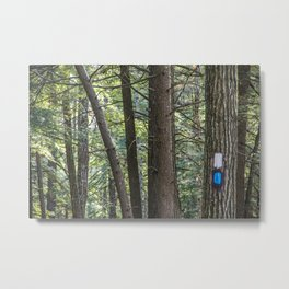 Trail Marker Among Trees Metal Print