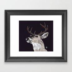 Deer (remindeer) Framed Art Print