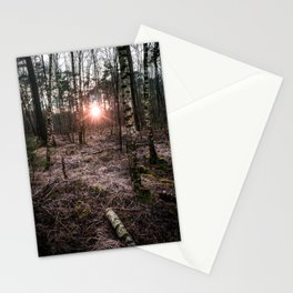 Forest, Wood, Sunset, Winter, Landscape, Photography, Nature, Trees, Netherlands Stationery Cards