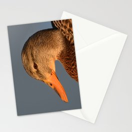 Female Duck Portrait Stationery Cards
