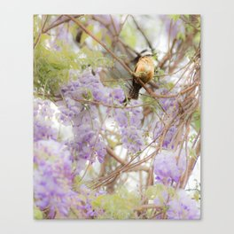 Little Visitor Canvas Print