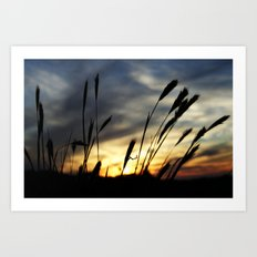 Blowin' in the wind Art Print