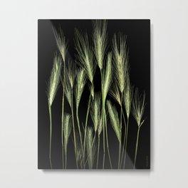 Botanicus Metal Print