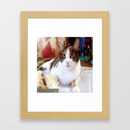 Khoshek charming kitty Framed Art Print