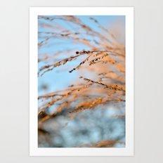 golden leaves against a blue sky. Art Print