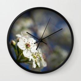 White Pear Tree Flowers on Blue Sky Wall Clock
