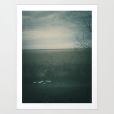 | formation of swans | Art Print