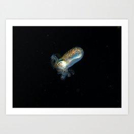 Baby squid Art Print