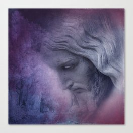 his face -2- Canvas Print