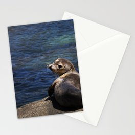 sea lion pup Stationery Cards