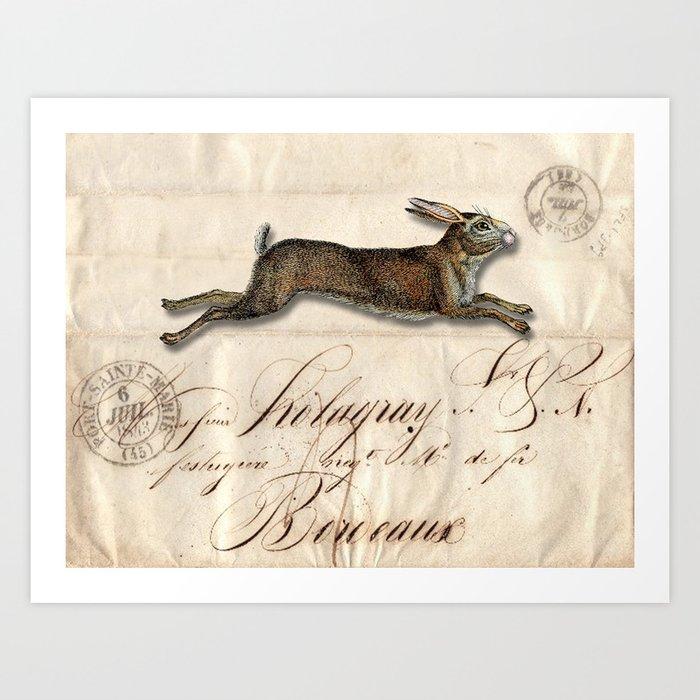 The French Rabbit Kunstdrucke