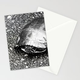 Paintless Turtle Stationery Cards