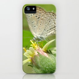 A Little Moth iPhone Case