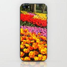 Tulip garden iPhone Skin