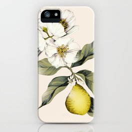 Jasmin & Bergamot iPhone Case