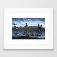 ducks Framed Art Prints featuring Ducks by Alex Dodds