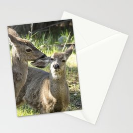 You Scratch My Ear... Stationery Cards
