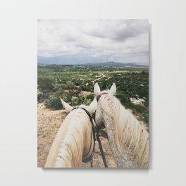 Horse Overlook Metal Print