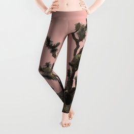 pink joshua tree Leggings