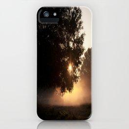 sunrise through the live oak iPhone Case