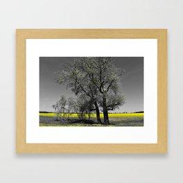 The Beauty of Canola Fields Framed Art Print
