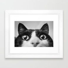 Funny Cat black and white Framed Art Print