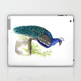 Peacock on Planter Laptop & iPad Skin