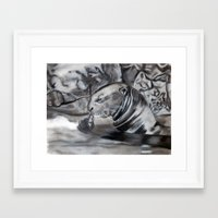 otter Framed Art Prints featuring Otter by Nick Ricciutti