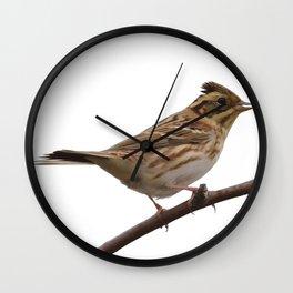 Rustic Bunting Bird Vector Isolated Wall Clock