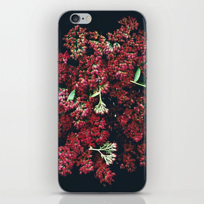 Burgundy Sedum Flowers iPhone Skin