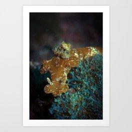 T-bar Nudibranch Art Print