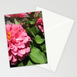 Ruffle Stationery Cards