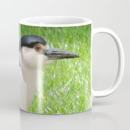 Black Crowned Night Heron in the Park Coffee Mug