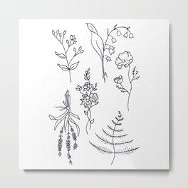 Lavender, Ferns, & Wildflowers Illustration Metal Print
