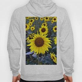 Sunflower Poetry Hoody