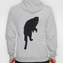 Magic Cat Hoody