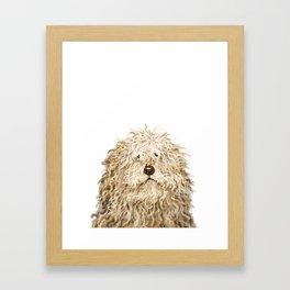 Cute Puli Dog Framed Art Print