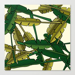 Botany: Banana Leaves Canvas Print