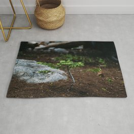 New Growth // California Rug