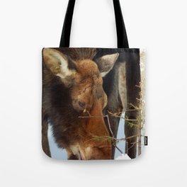 Moose Eating Snow Tote Bag