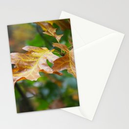 Brown Leaves Stationery Cards