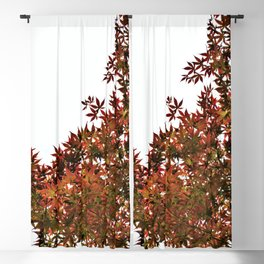 Changing of Seasons Blackout Curtain
