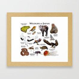 Wildlife of Japan Framed Art Print