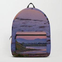 Back Bay Panorama Backpack