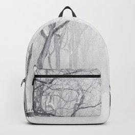 Snowy Park Backpack