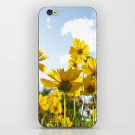 Daydream Delusion iPhone Skin