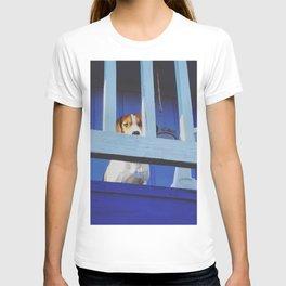 Blue Tom T-shirt