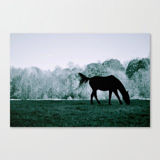 At the Greenway Canvas Print
