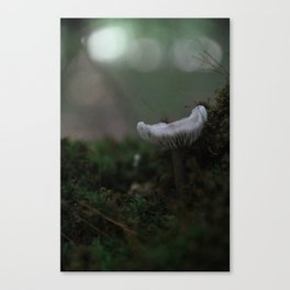 Abstract Nature II Canvas Print